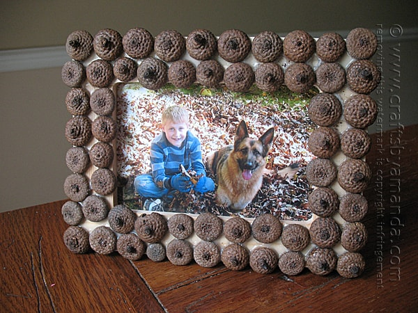 Picture This Adorable Acorn Craft